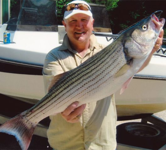One of the large stripers caught by a guest on one of our partner's guided fishing tours.