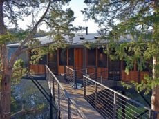 A morning view of the elevated bridge walkway through mature cedar trees providing access to the two Sky Suites.