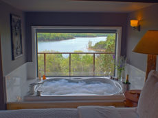 A close-up image of a bubbling Jacuzzi and the large picture window in front of it framing a tree-lined view of Beaver Lake.